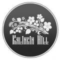 Аватар пользователя kalinkinhill